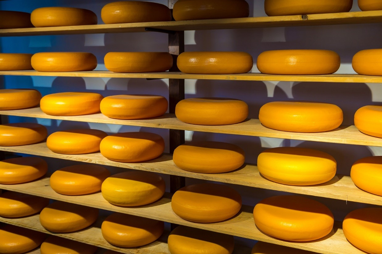 It won't get more Dutch then cheese: the Amsterdam Experience
